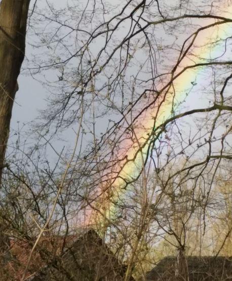 Regenbogen_Annapark