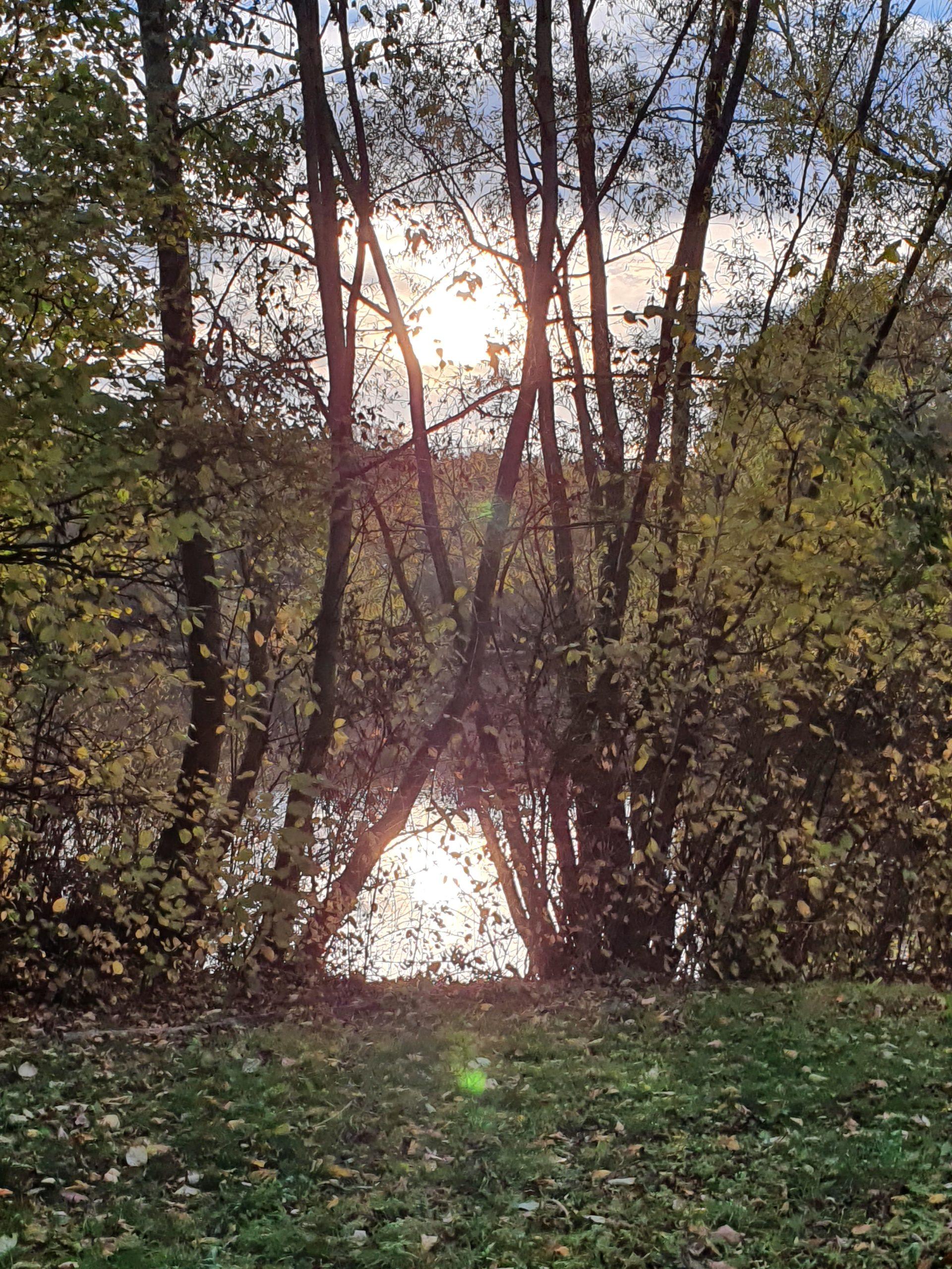 Teich in Wettbergen